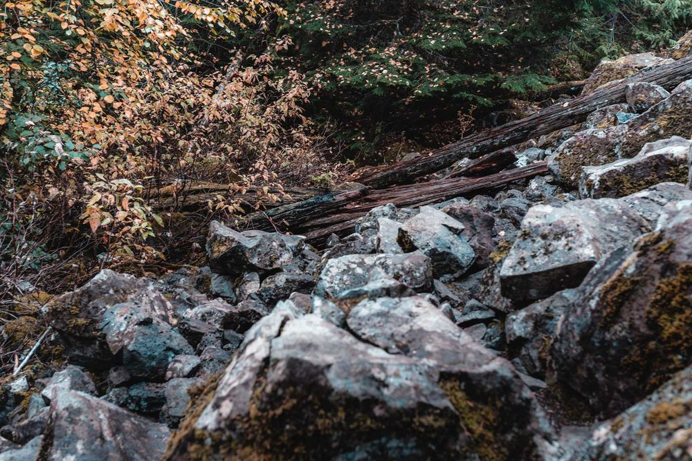 Brandywine Falls hike