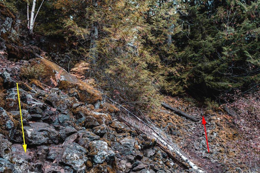 Brandywine Falls trail