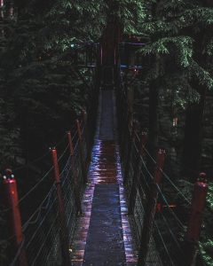 Suspension bridge at Capilano Park