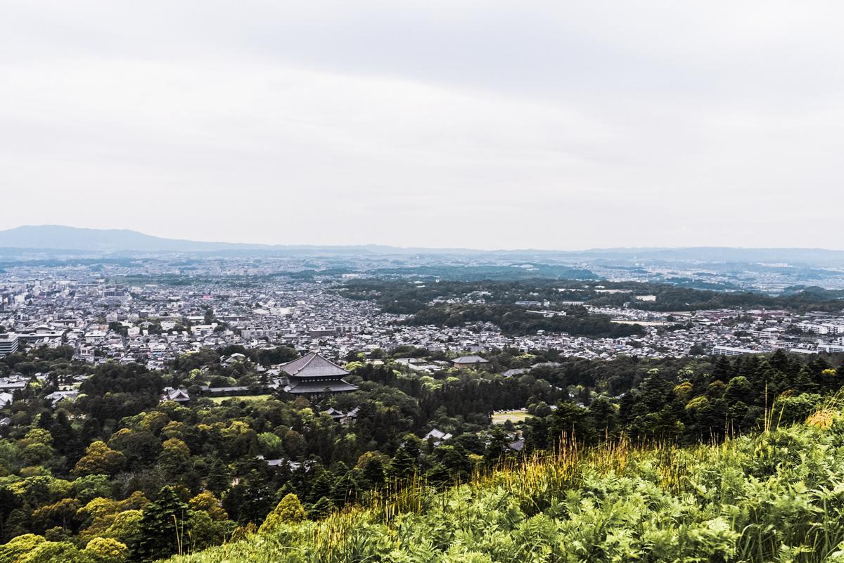 View on top of Mount Wakakusayama
